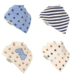 Dino and Stars Bib Set
